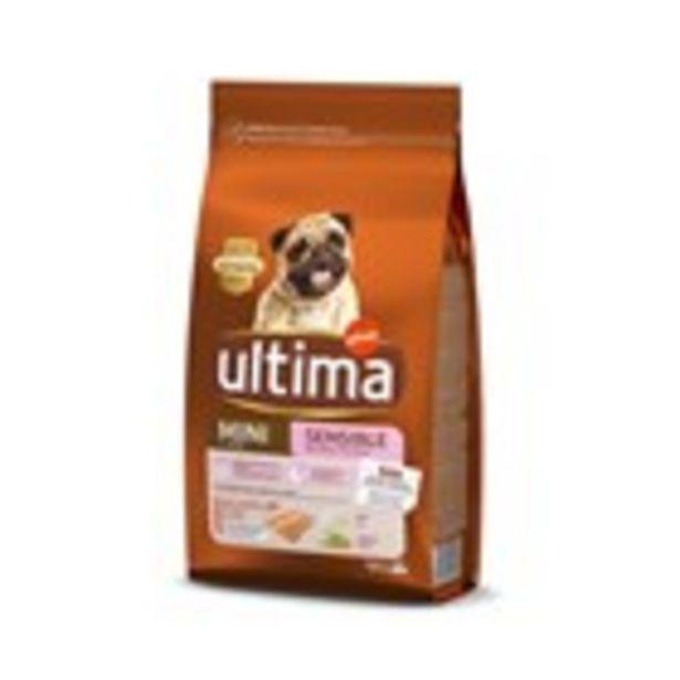 Oferta de Menjar de gos sec mini sensitive ULTIMA, 1.5 kg por 6,75€