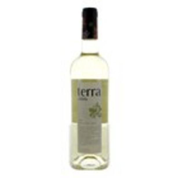 Oferta de Vi blanc TERRA d.o. Catalunya, ampolla 750 ml por 2,44€
