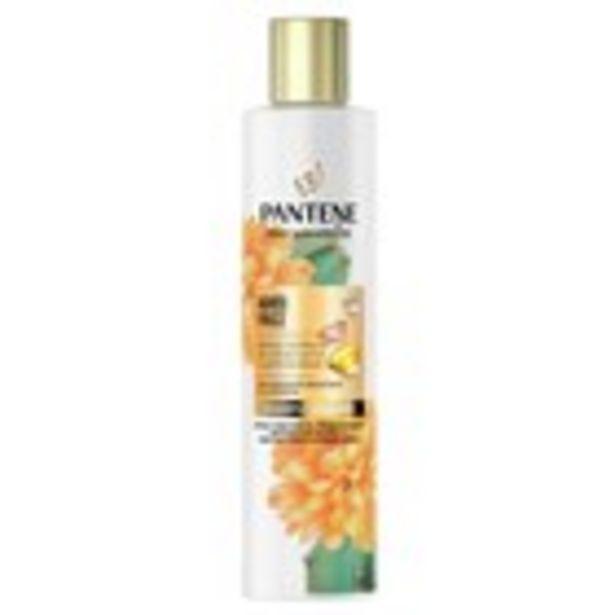 Oferta de Xampú pro V miracle anti-frizz cactus PANTENE, 225 ml por 2,57€