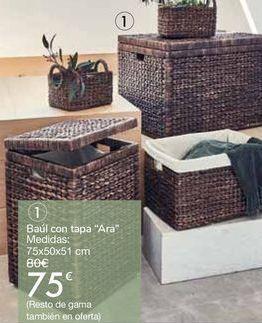 "Oferta de Baúl con tapa ""Ara""  por 75€"