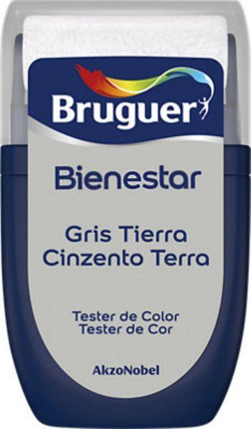 Oferta de Pintura tester BIENESTAR 30 ml gris tierra por 1€