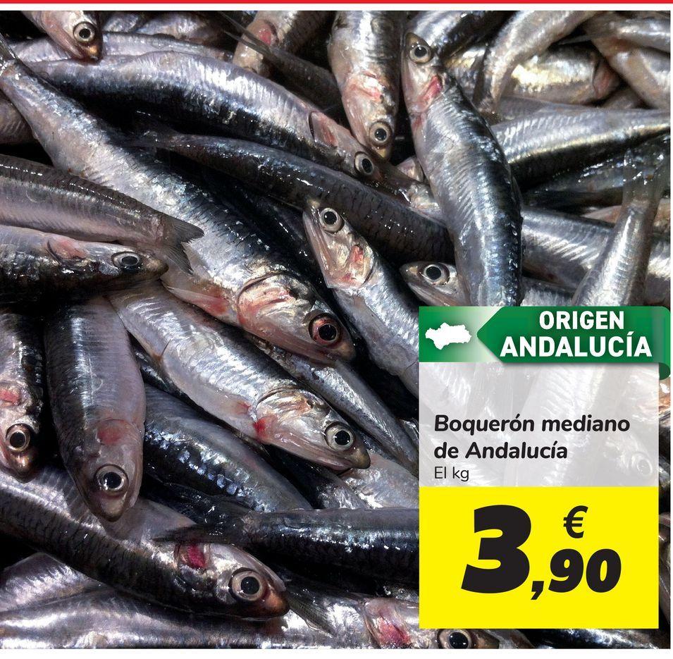 Oferta de Boquerones medianos de Andalucía por 3,9€
