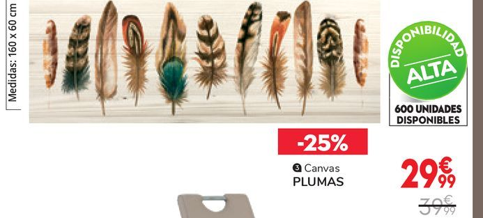 Oferta de CANVAS PLUMAS por 29,99€