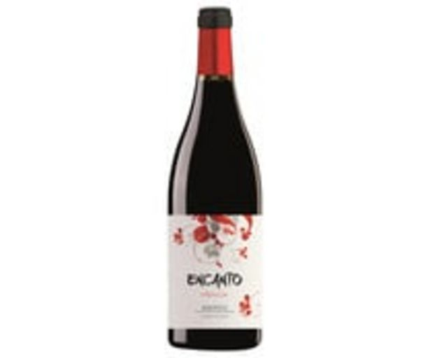 Oferta de Vino tinto con denominación de origen Bierzo ENCANTO botella de 75 cl. por 3,75€