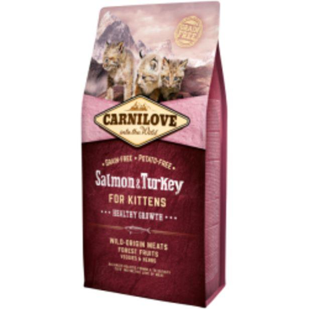 Oferta de Carnilove Grain Free para... por 16,9€
