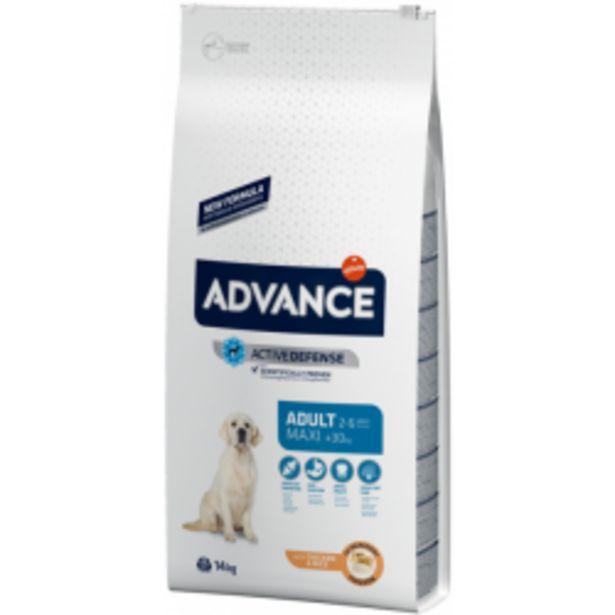 Oferta de Advance Maxi Adult con pollo por 49,99€