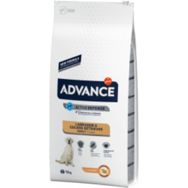 Oferta de Advance Labrador Adulto por 52,99€