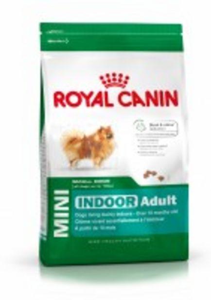 Oferta de Pienso ROYAL CANIN Mini Indoor por 13,88€