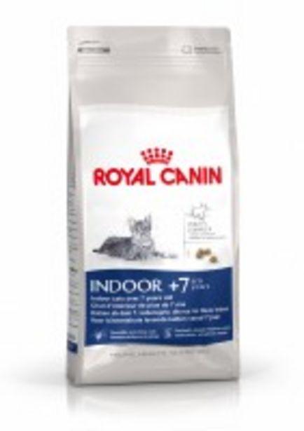 Oferta de ROYAL CANIN Gatos Indoor 7+ por 4,89€