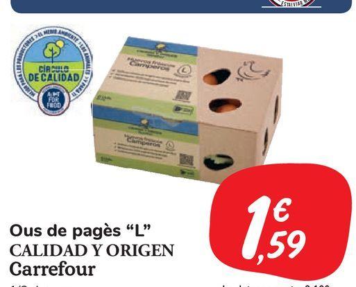 Oferta de Huevos L camperos CALIDAD Y ORIGEN Carrefour  por 1,59€